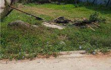 Bán 194m2 đất hẻm betong 6m Mỹ Hảo, Phường Chánh Mỹ, Thủ Dầu Một.