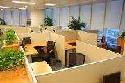Vị trí bàn làm việc giúp bạn thăng tiến không ngừng