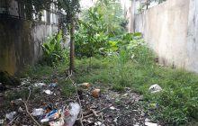 Bán đất đường DX43 khu phố 5 phường Phú Mỹ.