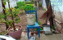 Bán đất đường hẻm Nguyễn Văn Lên gần trường học nguyễn Viết Xuân