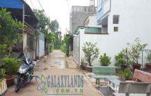 Bán đất nhánh đường An Mỹ – Phú Mỹ DX02 phường Phú Mỹ.