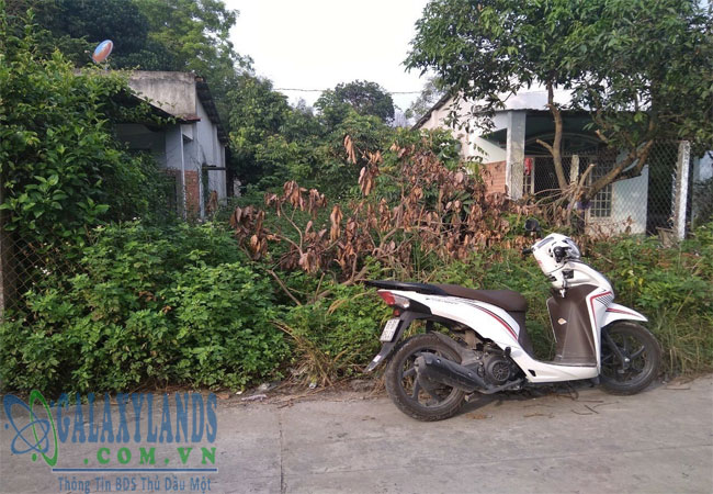 Bán đất phường Phú Hòa Bình Dương