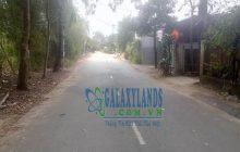 Bán đất đường DX43 phường Phú Mỹ, DT 10x40m.