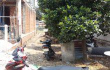 Bán đất 5×23.6m hẻm 147 Nguyễn Thị Minh Khai.