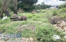 Bán đất 8.25x23m mặt tiền Mỹ Phước Tân Vạn Phú Mỹ.