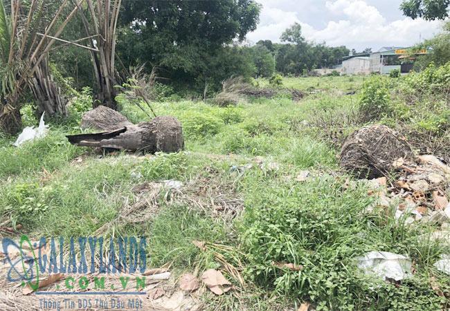 Bán đất đường Mỹ Phước Tân Vạn Phú Mỹ