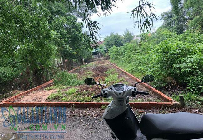 Bán đất Phú Lợi