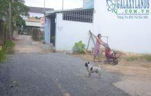 Bán đất phường Phú Lợi đối diện khu đô thị Phúc Đạt.