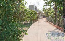 Bán đất 1 sẹc đường DX02 phường Phú Mỹ thích hợp xây biệt thự