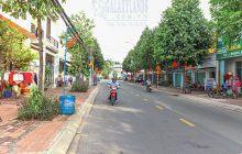 Bán đất mặt tiền đường Phạm Thị Tân Gần Đại Học Bình Dương