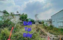 Đất Phú Lợi 5x20m, 104m2 hẻm Mỹ Phước Tân Vạn