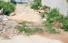 Bán đất 1 sẹc đường DX13 phường Phú Mỹ.